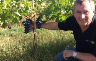 ARRA grape Greece October 2018