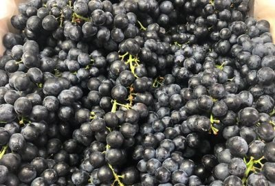 New grapes from India