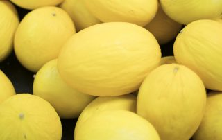 Jupiter's Brazilian Yellow Honeydew melons available soon