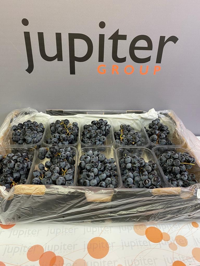 Fresh produce grower and supplier Jupiter Group's Chilean Maylen going to retailers