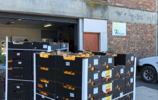 Fresh produce grower and supplier Jupiter Group's South African satsuma donation pallets