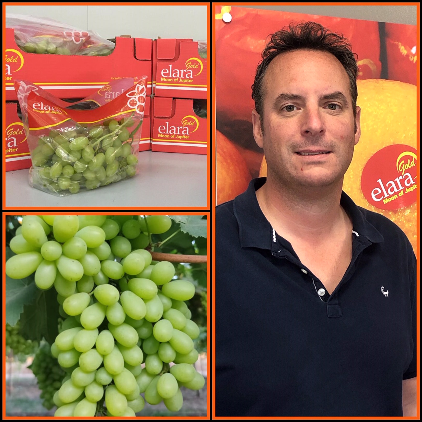 Fresh produce grower and supplier Jupiter Group's CEO Mark Tweddle comments on Indian grape season
