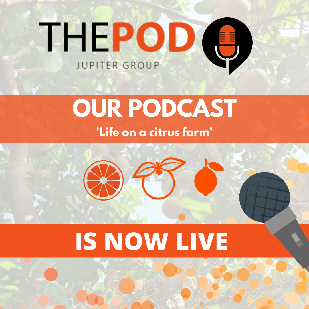 Fresh produce grower Jupiter Group's latest podcast available now