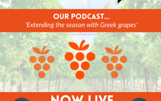 Fresh produce grower Jupiter Group are extending the season with Greek table grapes